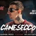 Canesecco live @ Roma